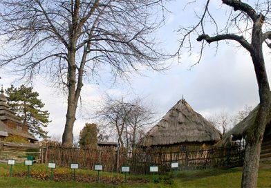 Як в Ужгороді на місці могил з'явився скансен