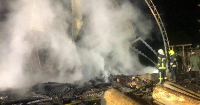 На Тячівщині пожежа знищила деревообробний цех та корівник. Загинула людина